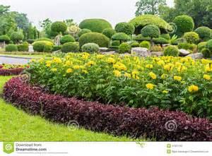 Marigold Flower Gardens