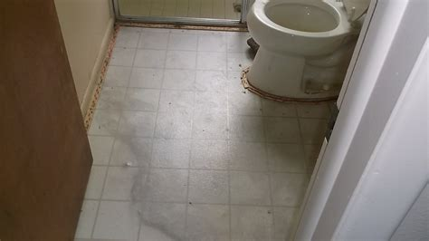 water fire  mold treatment gallery damage restoration