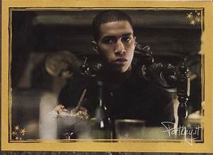 Harry Potter Wiki Blaise Zabini