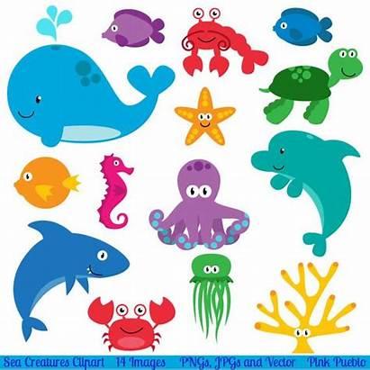 Sea Clip Animals Clipart Creatures Ocean Animal