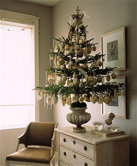 small  gorgeous christmas trees shelterness