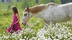 Alkohol Aus Der Apotheke Gegen Schimmel : pferde wie das pferd ein m dchentier wurde pferde haustiere natur planet wissen ~ Markanthonyermac.com Haus und Dekorationen