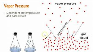 4 3 - Phase Diagrams  U0026 Vapor Pressure