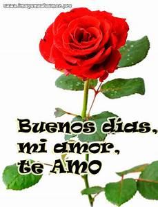 Imágenes de Rosas para desear Buenos Días