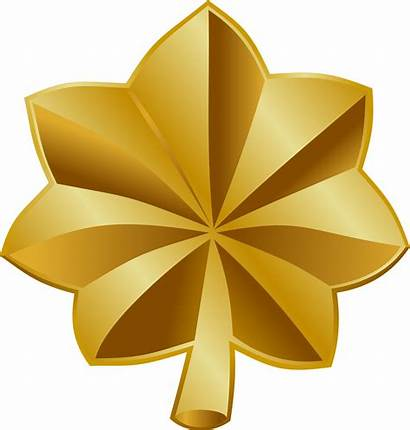 Major States Insignia Army Navy Force Air