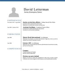 international curriculum vitae format pdf exemple de cv juriste