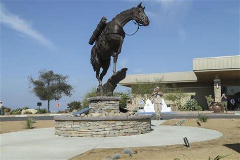horse   marine staff sergeant reckless argunners