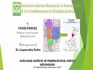 Extensive Market Research of Amoxicillin & Its ...