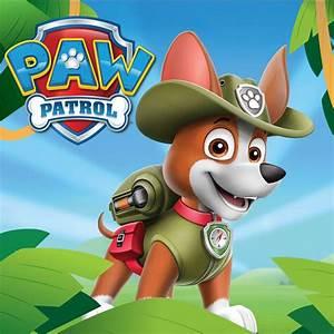 Paw Patrol Gardinen : paw patrol birthday ~ Whattoseeinmadrid.com Haus und Dekorationen