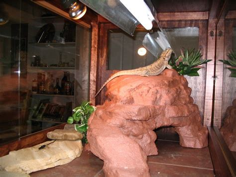 diy reptile platform cave petdiyscom