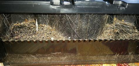 saugroboter bei hundehaaren meine testecke ein helfer auf den sich verlassen kann
