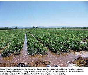 Irrigation   Water for all