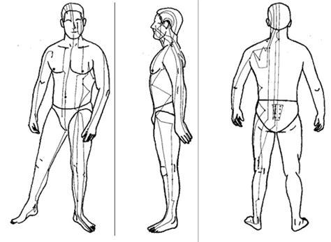 meridien du corps humain les meridiens tao et spiritualit 233