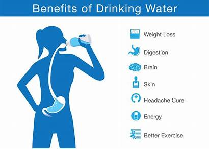 Water Important Why Human Health Reasons Wellness