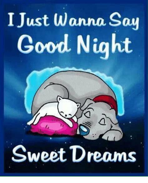 i just wanna say sweet dreams meme on sizzle