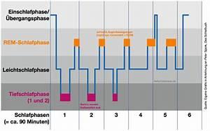 Wie Lange Sollte Man Kontoauszüge Aufheben : tiefschlafphase warum gesunder schlaf so wichtig ist ~ Lizthompson.info Haus und Dekorationen