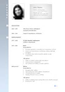 professional resume format for freshers best cv format for jobs seekers