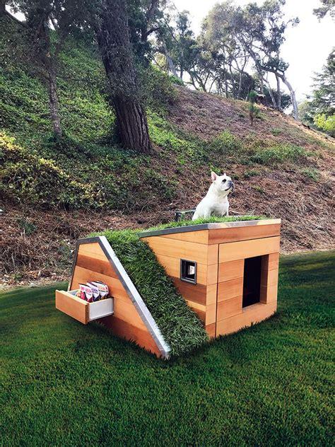 doggys dreamhouse dom dla psa  pracowni schicketanz
