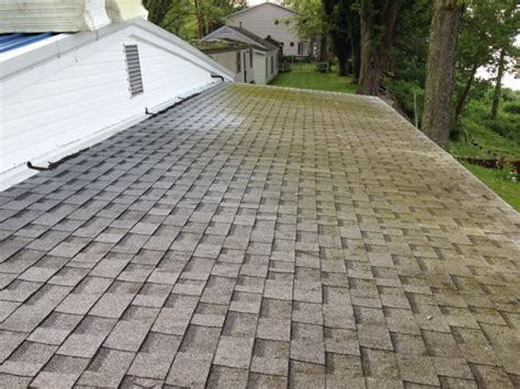 Does Moss Or Algae Love Your Shingle Roof?