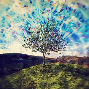 Trippy Acid Pictures Of Nature | www.imgkid.com - The ...