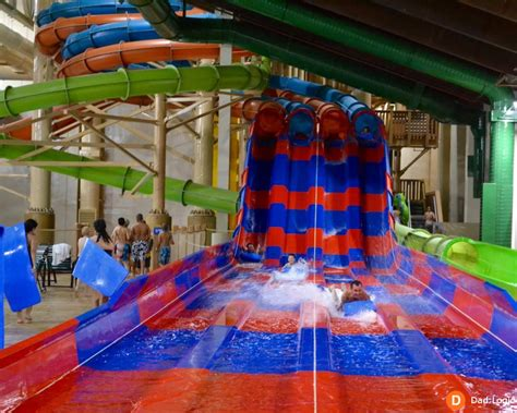 a parent s guide to great wolf lodge california logic