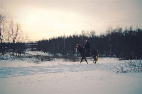 horse riding snow horseback marla winter cleveland flickr tips ohio wear morri via source ihearthorses helmet onlyinyourstate