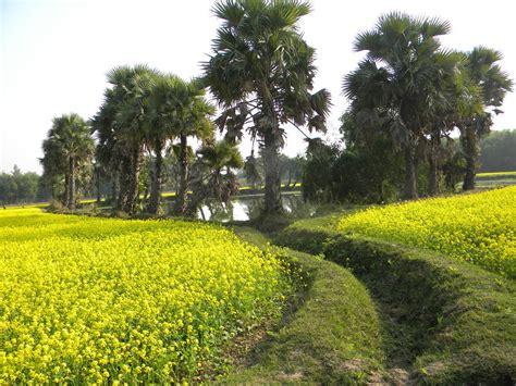 bhalki village india travel forum indiamikecom