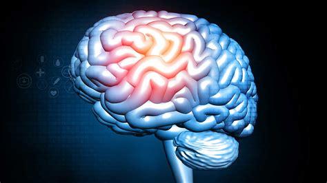 benzodiazepines  brain damage addiction resource