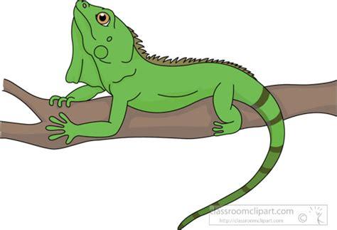 Iguana Clipart Green Lizard