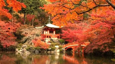 [Feature 396]Part 2 Kyoto Temples, Shrines, and Autumn ...