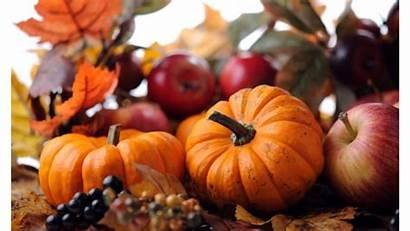 Pumpkin Fall 4k Wallpapers Fruit Pixelstalk Halloween