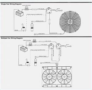 12 Volt Fan Relay Wiring Diagram  U2013 Dogboi Info