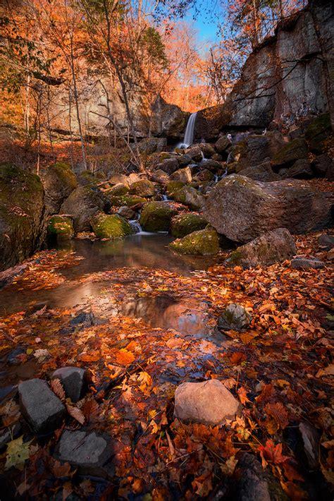 amazing nature photography   wow