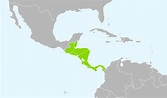 File:WGSRPD Central America.svg - Wikimedia Commons