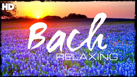 The Best The Best Relaxing Classical By Bach