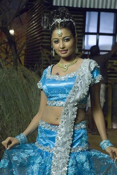Tamil Actress Blouse Stills Actresses Sinha Richa
