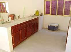 kitchen cabinets painting kitchen cabinets 3156