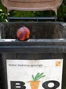 Maden In Der Mülltonne : ratten und maden was gegen m ffelnde m lltonnen hilft ratgeber k lner stadt anzeiger ~ Indierocktalk.com Haus und Dekorationen