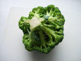 comment cuisiner les brocolis frais comment cuisiner brocolis