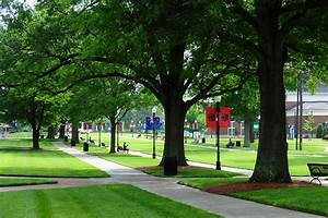 HPU Named 'Tree Campus USA' for Fifth Year in a Row | High ...