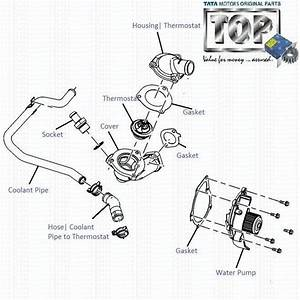 Bestech Thermostat Wiring Diagram