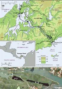 Map Of The Panama Canal With Sites Surveyed For Elamenopsis Kempi 1