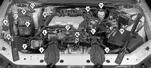 Where Does The Transmission Fluid Goes For A 2002 Chevy