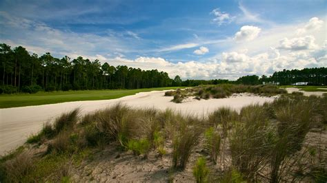 Course At Hammock by Creek Course At Hammock Dunes Rees Jones Inc Golf