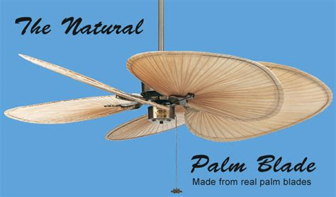 Palm Leaf Ceiling Fan Blades by Palm Leaf Ceiling Fans Palm Tree Leaf