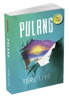 Resensi Novel Best Seller Terbaru PULANG - Tere Liye