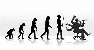 The Evolution Of Stress