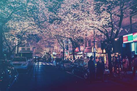city japan lights street street light filter