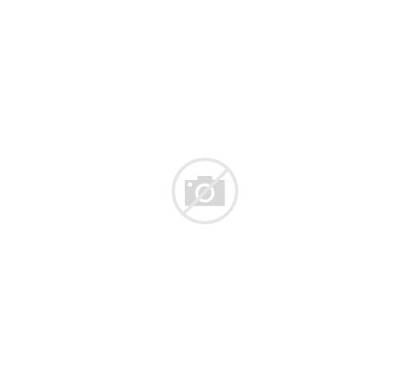 Globe Terrestre Sans Fascination Fin Une Plastic