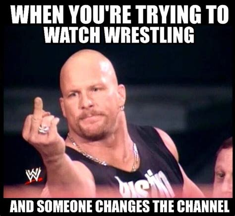 Pro Wrestling Memes - best 25 wrestling memes ideas on pinterest wwe stuff wwe m and wwe t